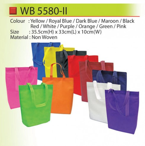 Budget Non Woven Bag (WB5580-II)