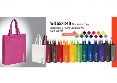 Budget Non Woven Bag (WB5582-III)