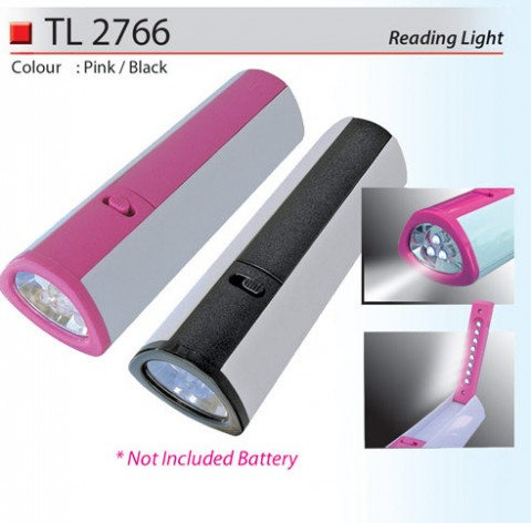 Reading Torchlight (TL2766)