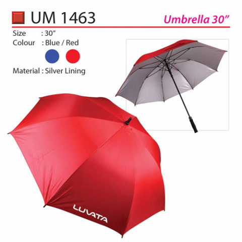 Fully Auto Open Umbrella (UM1463)